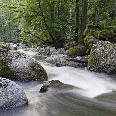 Feldaist_Naturfotografie_web